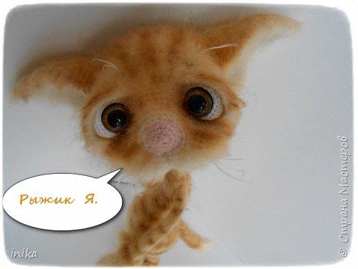 Мышь не пробегала...??? фото 7