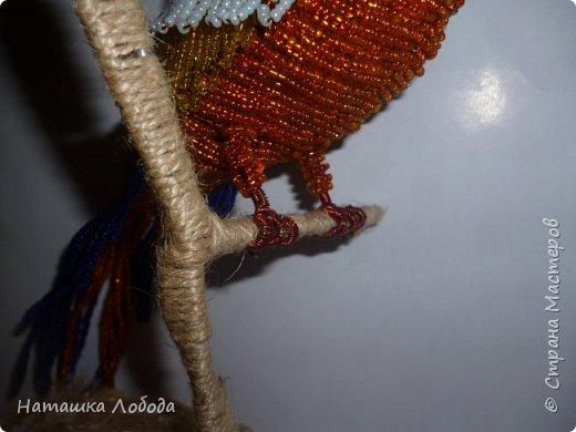 Попугай из бисера на каркасе фото 7