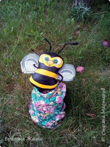 всем жителям замечательной страны огромный привет!!!!!сегодня я к вам с милыми пчелками))))как то в онлайн был бесплатный мк замечательной мастерицы Людмилы Набиуллиной  ,но я как всегда на него опоздала (((((((((((и смогла увидеть только фото  готовой пчелки где можно было заказть чтоб купить мк)))но покупать у меня нет возможности))а фантазия и руки есть)))посмотрела на картинку и создала своих пчелок!за что огромноеееееееееееееее спасибочки прекрасной мастерицы за чудесную замечательную идею!!!!! и так приглашаю вас в пчелиный рой))))))))))))))))))))) фото 11