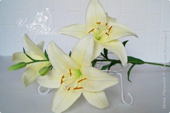 Букет лилий для моего любимого, замечательного человечка, моей родной сестренке Иришки, большой любительницы этих чудесных цветов.  фото 4