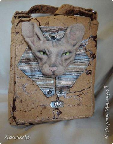 Египетские мотивы с кошечкой породы Сфинкс. фото 5