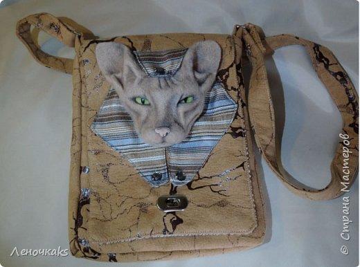 Египетские мотивы с кошечкой породы Сфинкс. фото 3