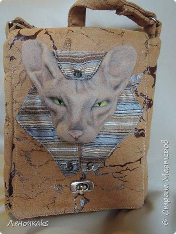 Египетские мотивы с кошечкой породы Сфинкс. фото 1