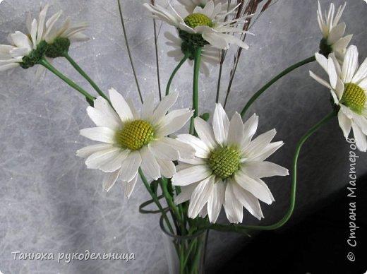 Здравствуйте все жители и гости Страны! Лето пора цветения и ярких красок.  Хочу немного показать своих цветочков. Эти цветы растут у меня на балконе. Все живые, кроме ромашек (они у меня уже отцвели). Но я слепила немного ромашек из холодного фарфора. фото 3
