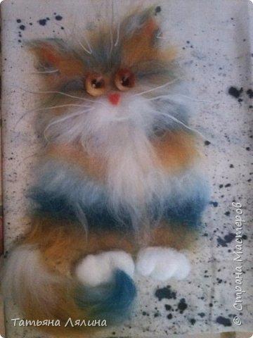 """Разноцветные шерстяные коты очаровали меня раз и навсегда. Еще один """"экземпляр"""" фото 1"""