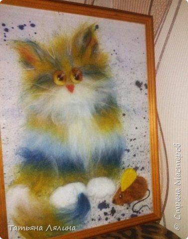 """Разноцветные шерстяные коты очаровали меня раз и навсегда. Еще один """"экземпляр"""" фото 2"""