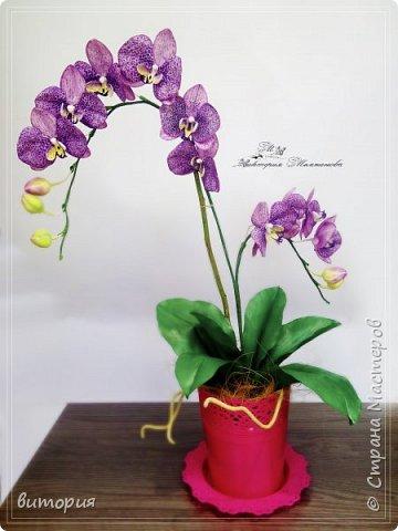 орхидея из иранского фоамирана