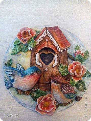 Птичье семейство. фото 1