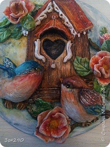 Птичье семейство. фото 3