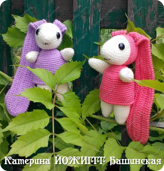 Зайчики-Длинноушки. фото 5