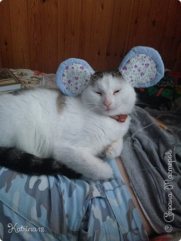 Вот такая мышка сотворилась у меня на днях. Только я ее закончила, как нашлись уже претенденты на нее - моя сестра забрала ее себе и теперь с ней спит... Забавно?! фото 7