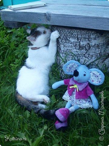 Вот такая мышка сотворилась у меня на днях. Только я ее закончила, как нашлись уже претенденты на нее - моя сестра забрала ее себе и теперь с ней спит... Забавно?! фото 5