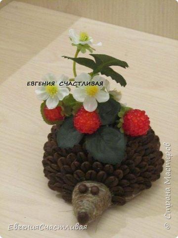 """""""МАКОВКА""""- использованы натуральные кофейные зерна, искусственные цветы-  маки, флор зелень, металлический декор-подкова, керамическая подставка, декоративные шары фото 7"""