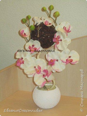 """""""МАКОВКА""""- использованы натуральные кофейные зерна, искусственные цветы-  маки, флор зелень, металлический декор-подкова, керамическая подставка, декоративные шары фото 5"""