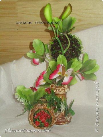"""""""МАКОВКА""""- использованы натуральные кофейные зерна, искусственные цветы-  маки, флор зелень, металлический декор-подкова, керамическая подставка, декоративные шары фото 18"""