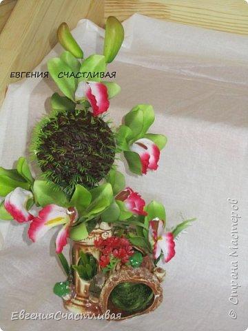 """""""МАКОВКА""""- использованы натуральные кофейные зерна, искусственные цветы-  маки, флор зелень, металлический декор-подкова, керамическая подставка, декоративные шары фото 19"""