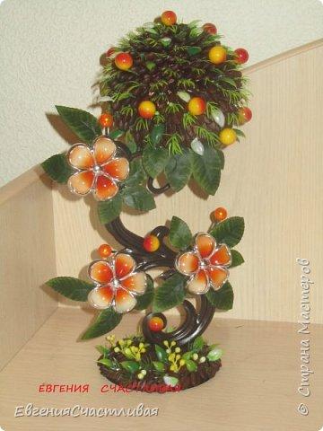 """""""МАКОВКА""""- использованы натуральные кофейные зерна, искусственные цветы-  маки, флор зелень, металлический декор-подкова, керамическая подставка, декоративные шары фото 22"""