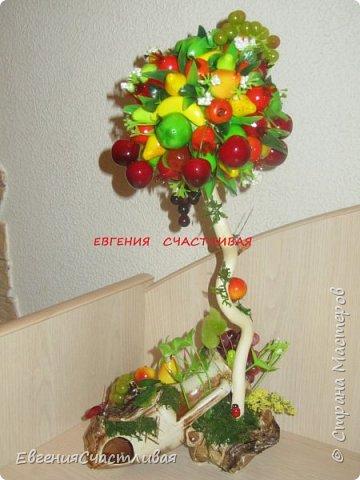 """""""Фруктовый сад"""" -использованы искусственные фрукты- виноград, яблоки нескольких видов и , сахарные ягодки, груша, флор зелень, металлический декор, керамическая подставка, искусственный мох, декор лягушка, б/коровка фото 9"""