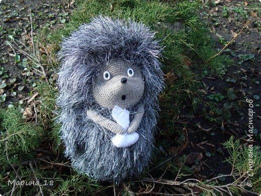 """Моя самая свежая авторская игрушка Волк из мульта """"Жил-был Пёс"""".  Сидя 40 см. фото 22"""