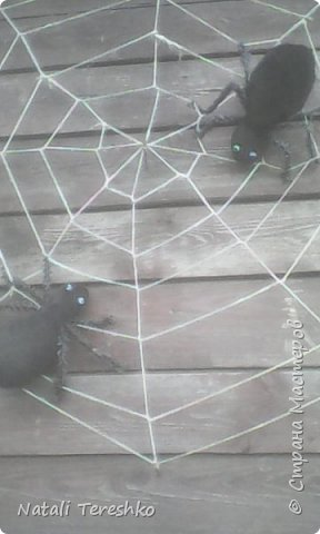 Мои верные соседи!!!!! фото 10