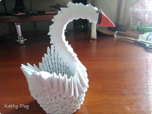 Мой лебедь  фото 6