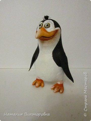 Пингвины из Мадагаскара! фото 4