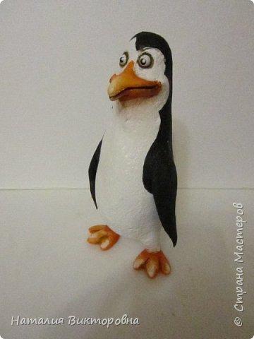 Пингвины из Мадагаскара! фото 5