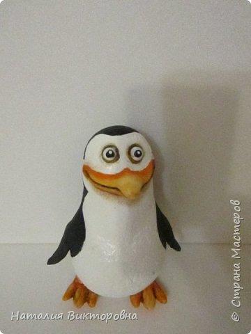 Пингвины из Мадагаскара! фото 7