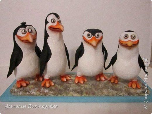 Пингвины из Мадагаскара! фото 1