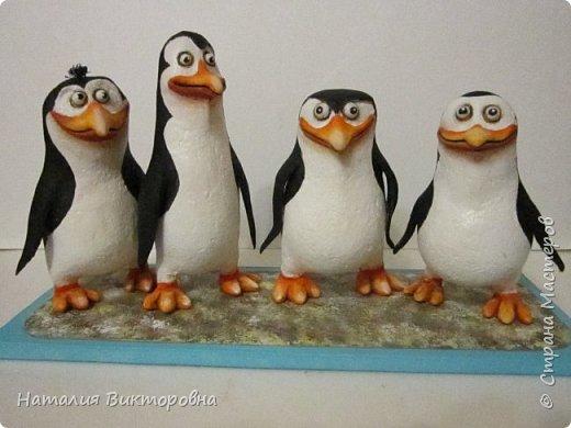 Пингвины из Мадагаскара! фото 2