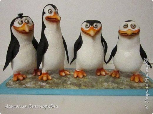 Пингвины из Мадагаскара! фото 11