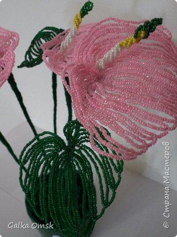 Это мой первый цветок из бисера.Все свои работы я выполняю по мастер-классам из Интернета. Благодарю мастеров за их труд. Высота цветка - 30 см, в диаметре -22см фото 2