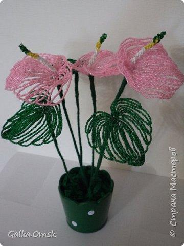 Это мой первый цветок из бисера.Все свои работы я выполняю по мастер-классам из Интернета. Благодарю мастеров за их труд. Высота цветка - 30 см, в диаметре -22см фото 1