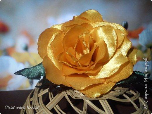Цветок солнца фото 3