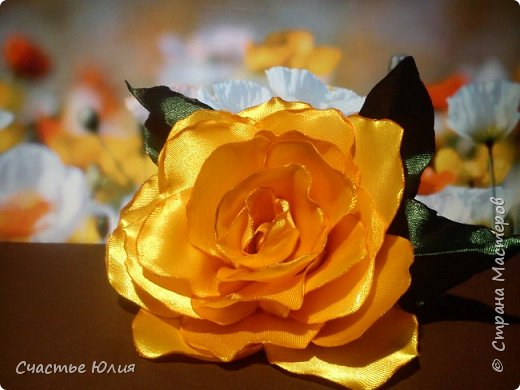 Цветок солнца фото 2