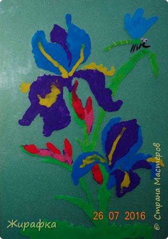 Эти Ирисы сделала Дарья, 9 лет. Работа одна, а фоны разные.   фото 6