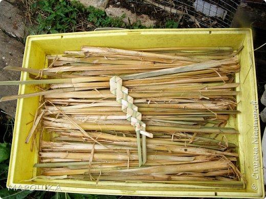 будем делать вот такую салфетку или подставку по горячее, понадобятся: рогоз (чакан), скалка, ножницы, нож фото 3