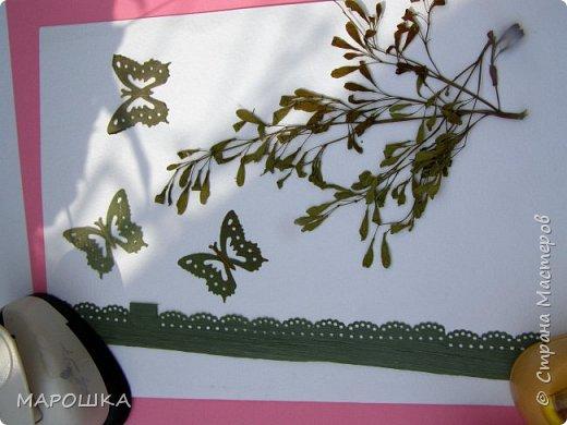 бабочки из листьев: яблони, кукурузы, винограда фото 15