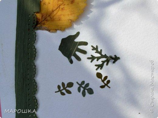 бабочки из листьев: яблони, кукурузы, винограда фото 12