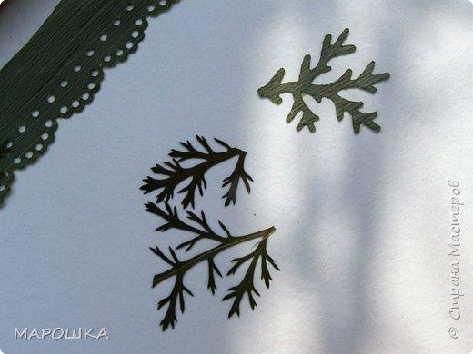 бабочки из листьев: яблони, кукурузы, винограда фото 10