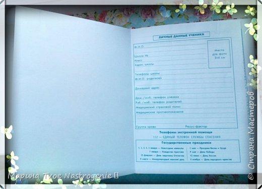 Школьный дневник с 1 по 4 класс фото 4