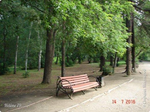 Здравствуйте, дорогие жители нашей СМ!  Приглашаю ВАС на прогулку по летнему саду.   фото 5
