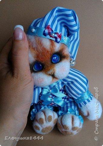 Сегодня родился котёнок Люк фото 1