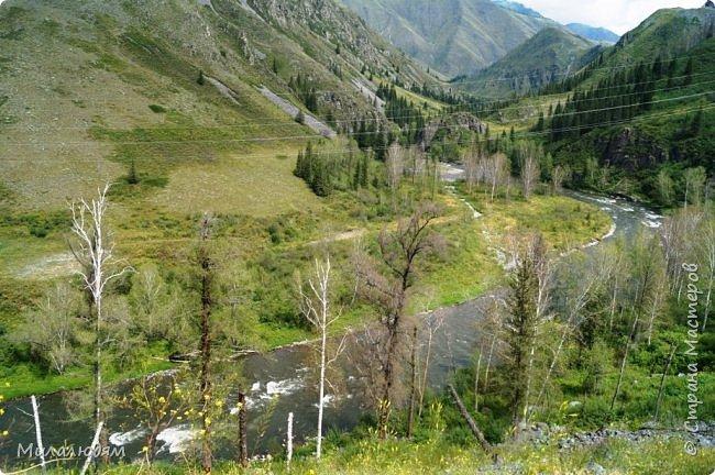 Всем здравствуйте! Приглашаю вас с собой в путешествие по Горному Алтаю. Зарядиться его мощной энергией и полюбоваться его красотами и величием. фото 8