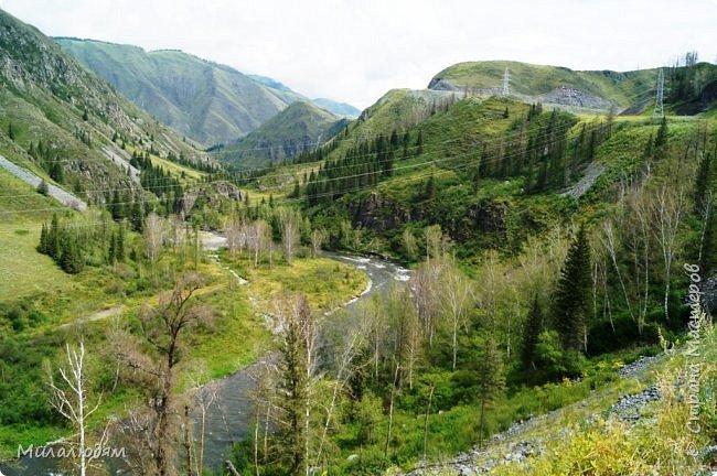 Всем здравствуйте! Приглашаю вас с собой в путешествие по Горному Алтаю. Зарядиться его мощной энергией и полюбоваться его красотами и величием. фото 9