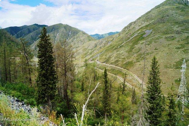 Всем здравствуйте! Приглашаю вас с собой в путешествие по Горному Алтаю. Зарядиться его мощной энергией и полюбоваться его красотами и величием. фото 21