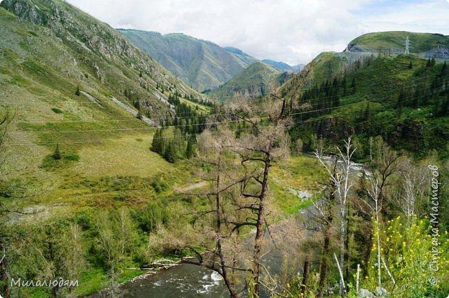 Всем здравствуйте! Приглашаю вас с собой в путешествие по Горному Алтаю. Зарядиться его мощной энергией и полюбоваться его красотами и величием. фото 22