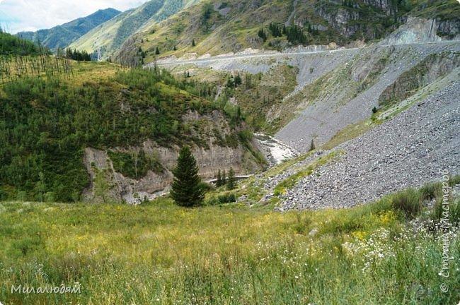 Всем здравствуйте! Приглашаю вас с собой в путешествие по Горному Алтаю. Зарядиться его мощной энергией и полюбоваться его красотами и величием. фото 36