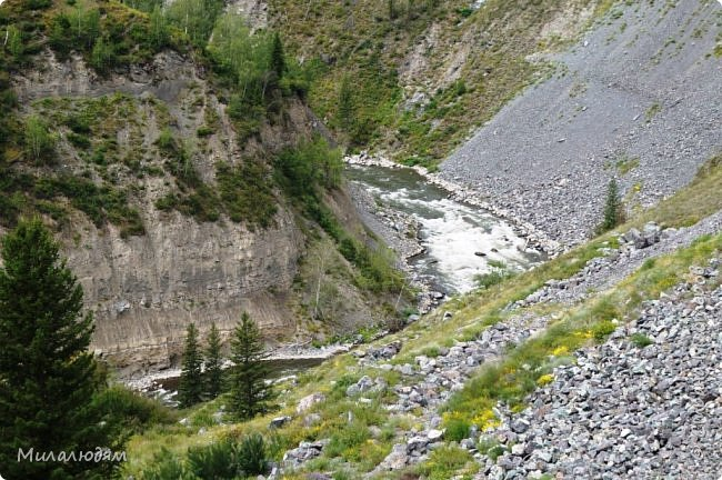 Всем здравствуйте! Приглашаю вас с собой в путешествие по Горному Алтаю. Зарядиться его мощной энергией и полюбоваться его красотами и величием. фото 37