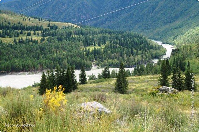 Всем здравствуйте! Приглашаю вас с собой в путешествие по Горному Алтаю. Зарядиться его мощной энергией и полюбоваться его красотами и величием. фото 41